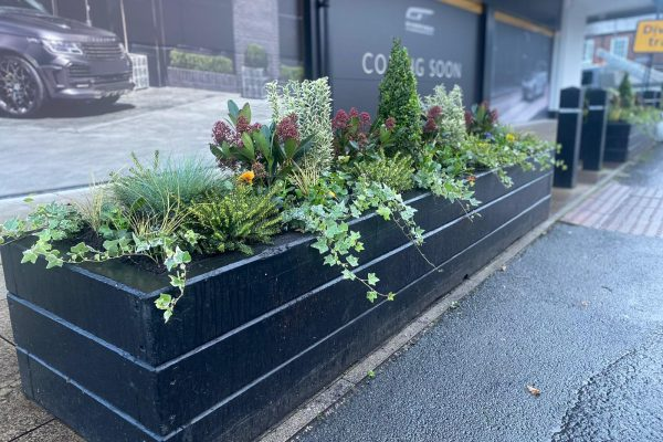 Commercial Gardener in Knutsford