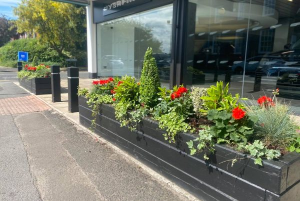 Commercial Landscapers Cheshire
